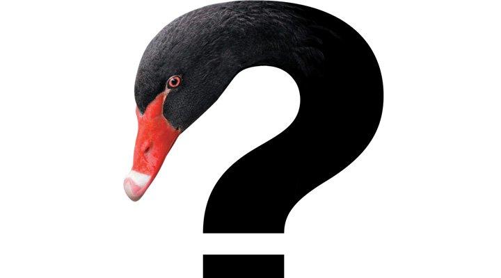 Черный Лебедь уже летает над планетой