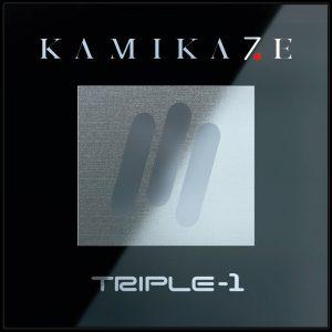 Чип Kamikaze того же размера, что и обычные чипы, но плотность схемы, повысившаяся в 5,2 раза, увеличивает производительность до показателя 300 гигахеш или более.